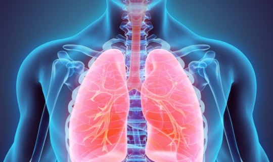 Clean Air: Bringing Gratitude to our Healthy Lungs